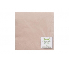RECYCLED PAPER NAPKINS PK20 33X33CM 2PLY