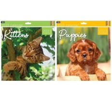 2020 Square Calendar Kittens & Puppies